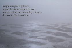 3a De droom van de zee