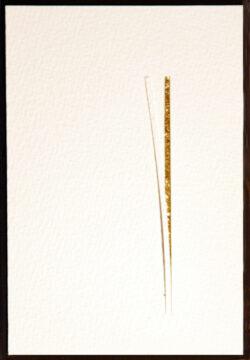 snijplankje (10x15) (3)
